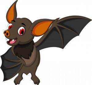 Bat fruit